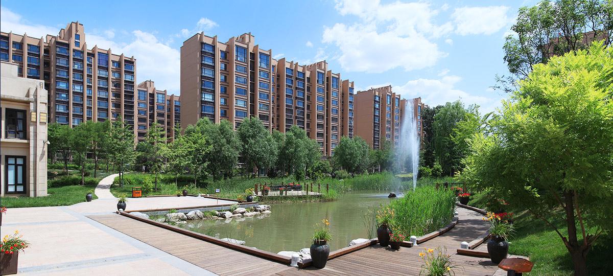 滨江盛元湘湖里地下室、屋面防水工程