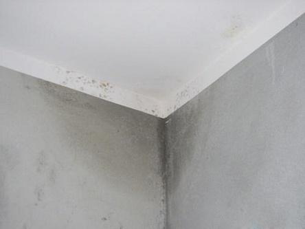 顶部墙缝渗漏问题