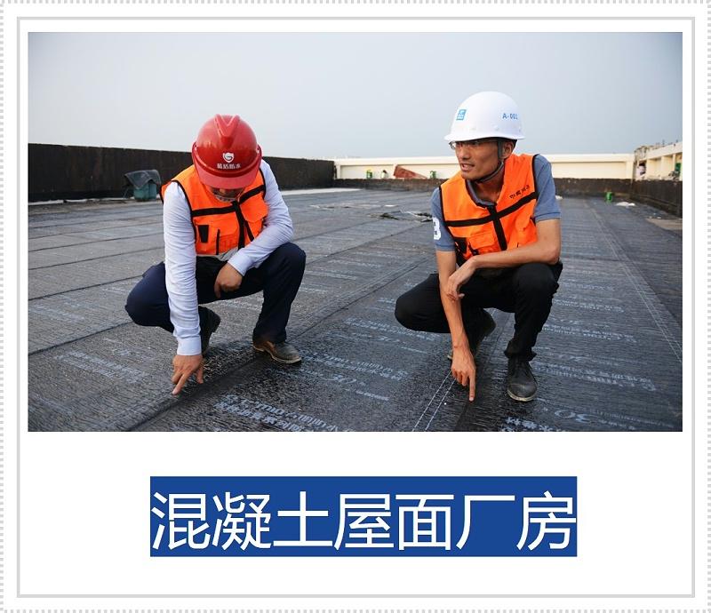 混凝土厂房杭州蓝盾厂房防水维修